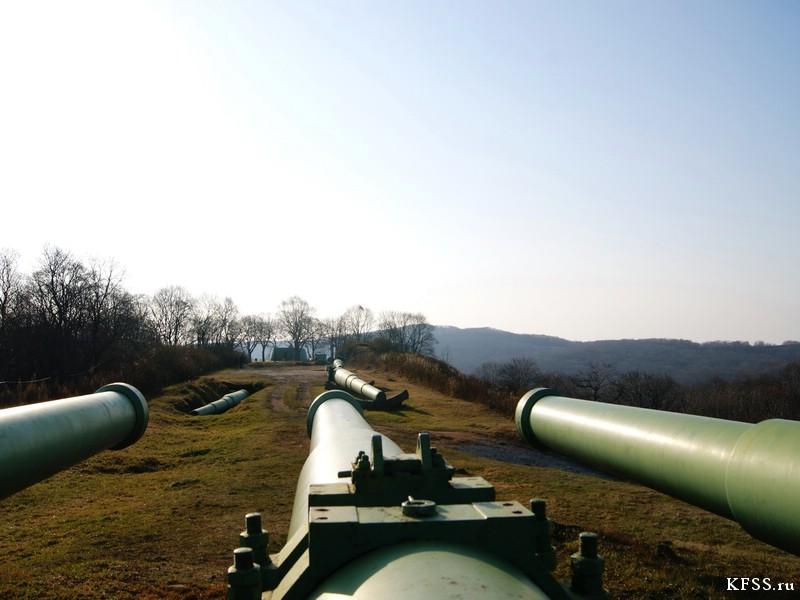 Орудийные стволы на огневой позиции Ворошиловской батареи (№981) на острове Русском